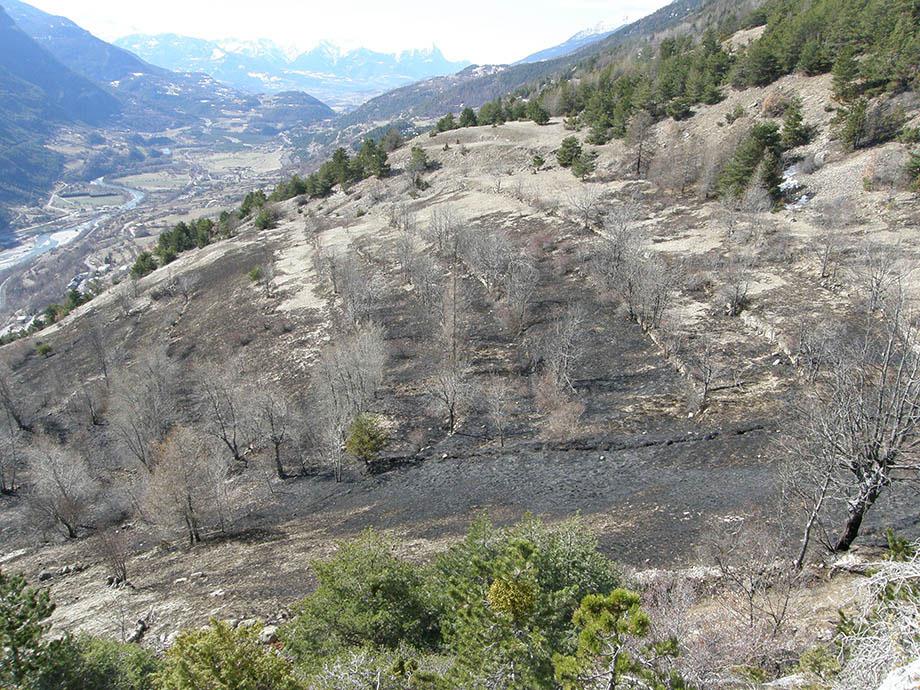 23 mars 2008 le feu est passé