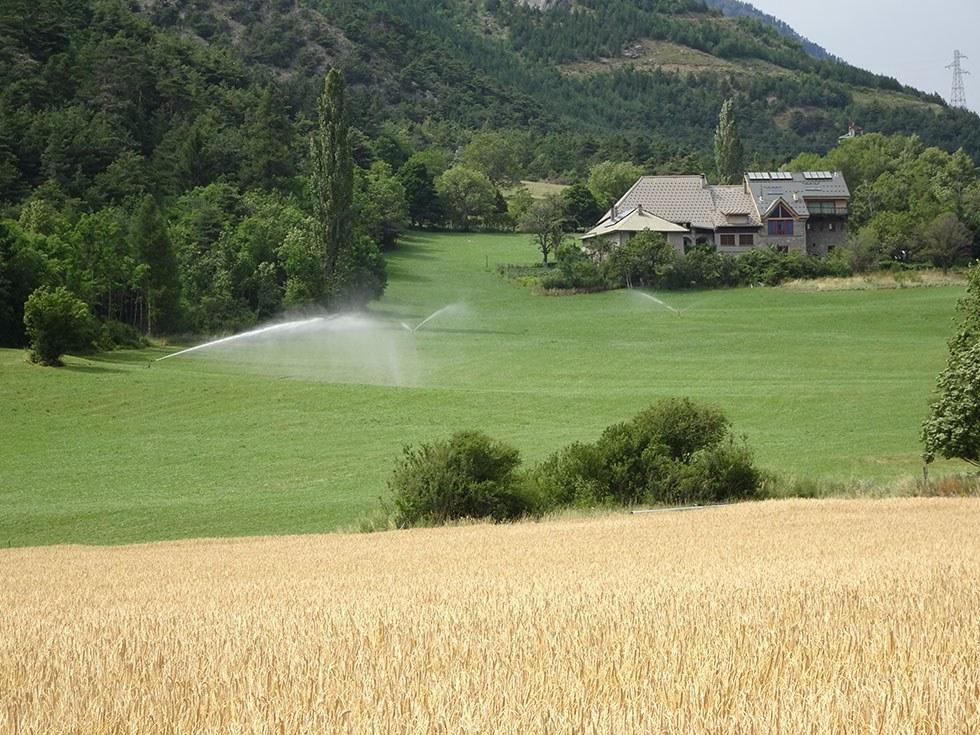 Agriculture moderne à St Thomas.