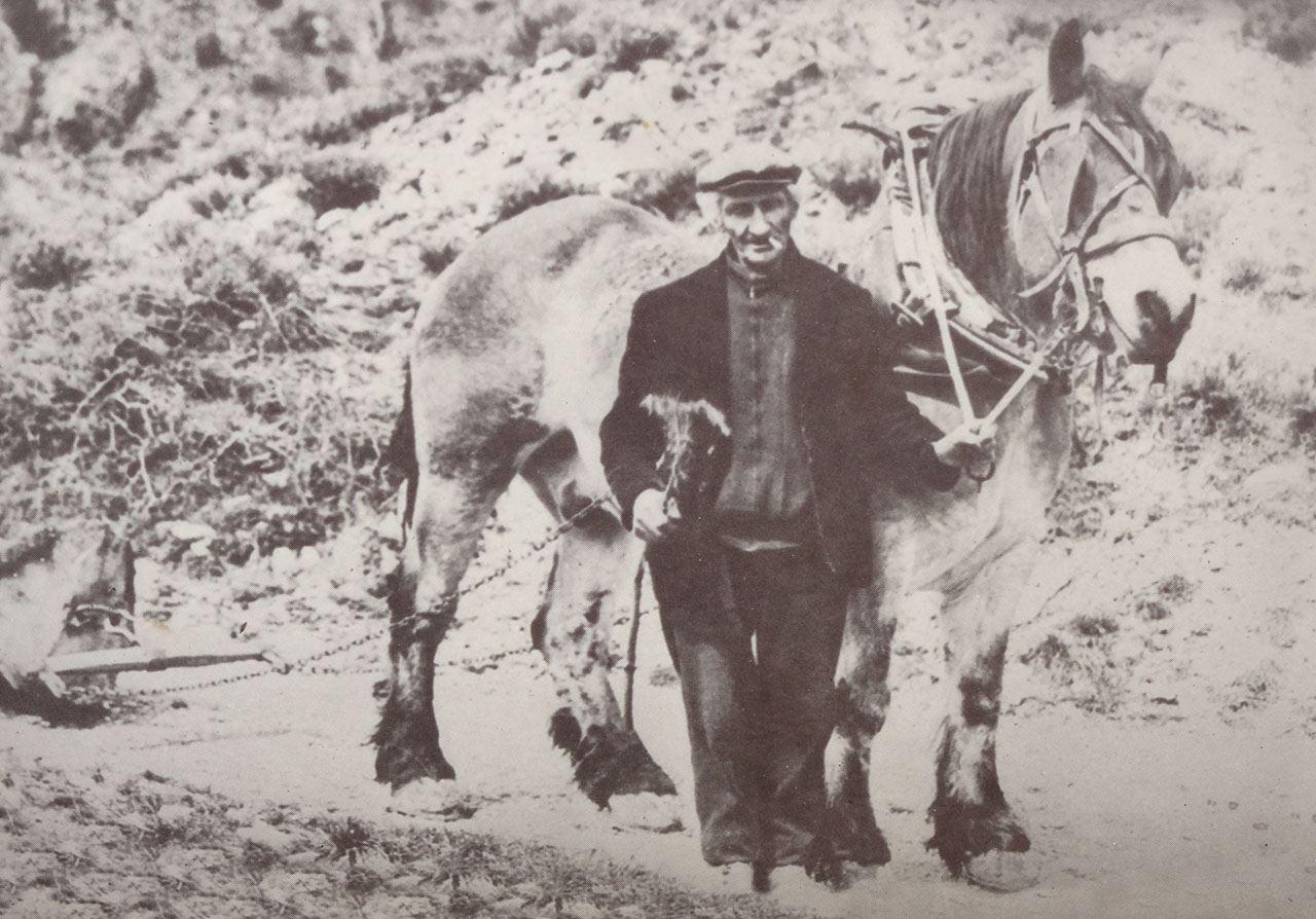 Image de la vie quotidienne aux Sagnes : Jean Buffe et son cheval.