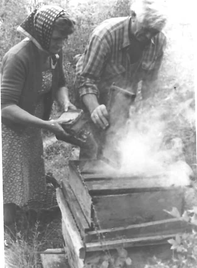 Roger et Jeannette Brun au rucher : enfumage.(Ph.J.M.Collomb)