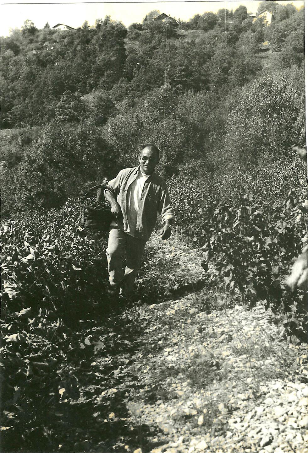 Les responsabilités publiques n'ont pas diminué le goût de Marcel pour les choses de la terre. Il a gardé la forme et les savoirs faire.