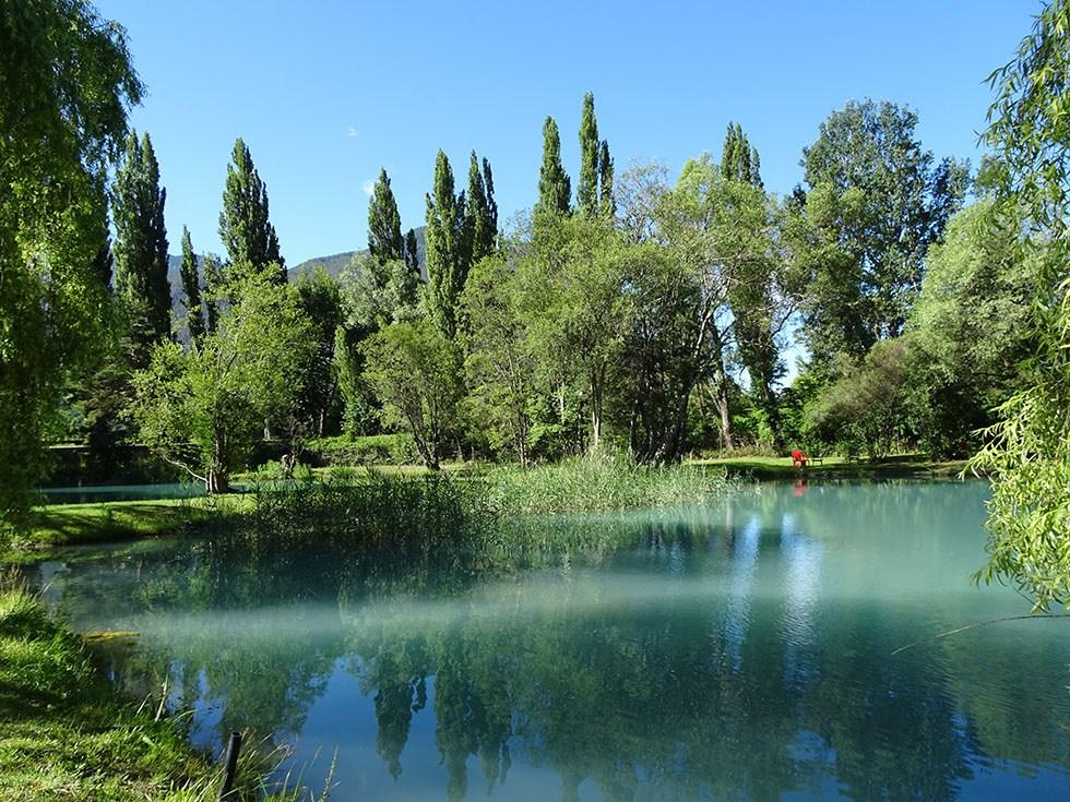 Bassin de la pisciculture en juin