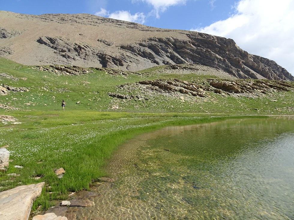 Le joli lac sans nom 2631m et ses linaigrettes devant la crête des Rougnous.