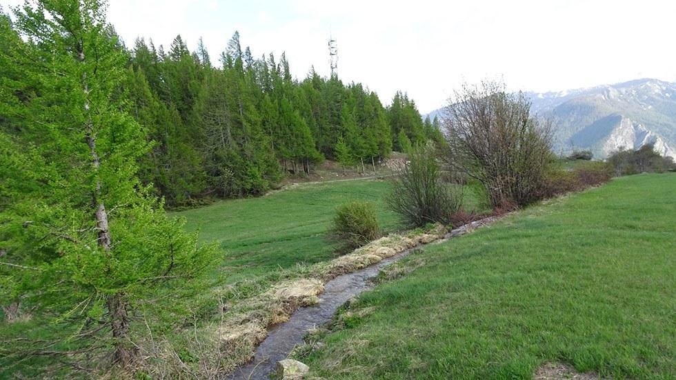 Le canal de Beauregard à Truchet