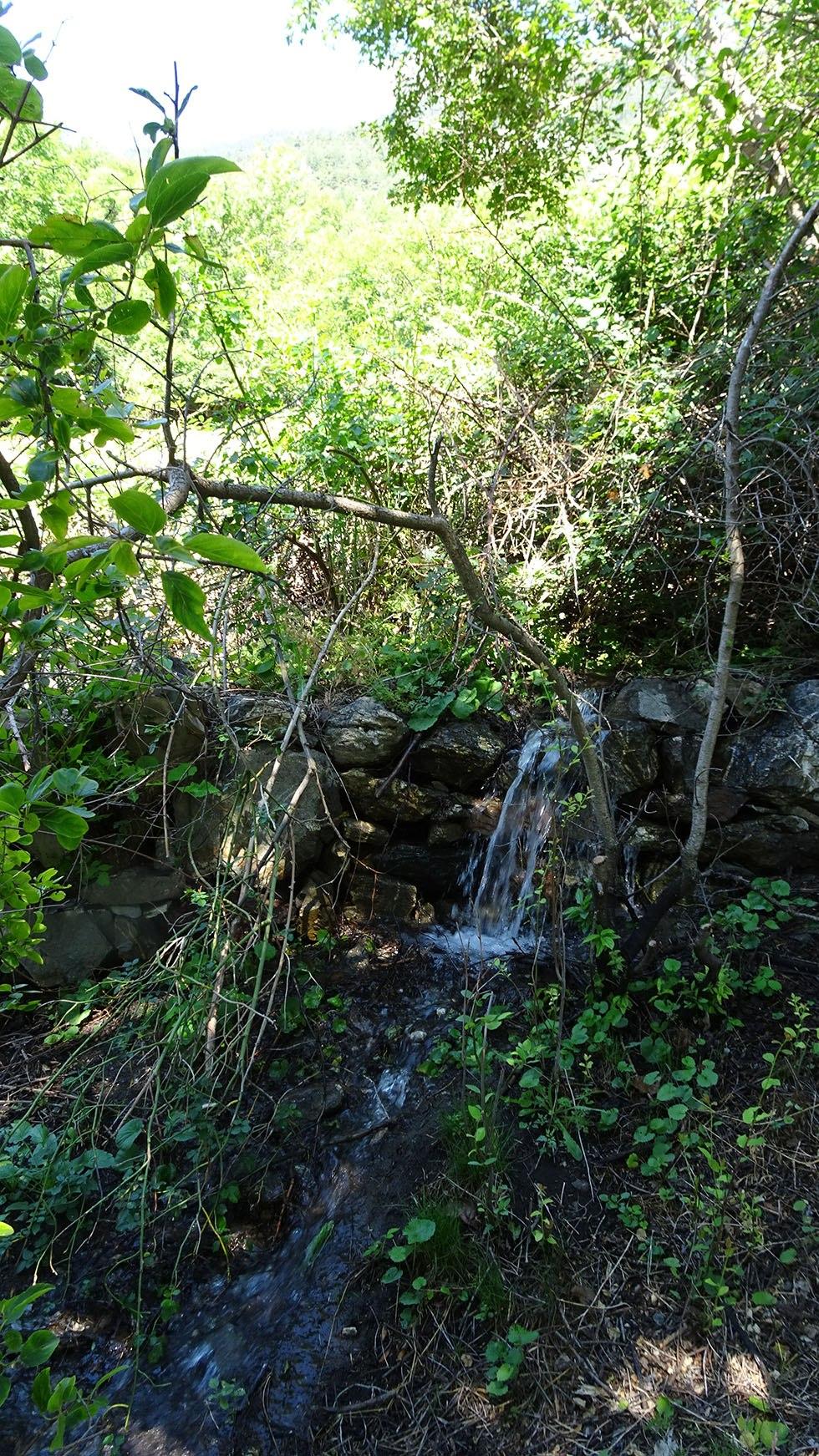 Ici s'infiltrent les eaux de Manouel dans les terrasses autrefois cultivées du Champ Blanc